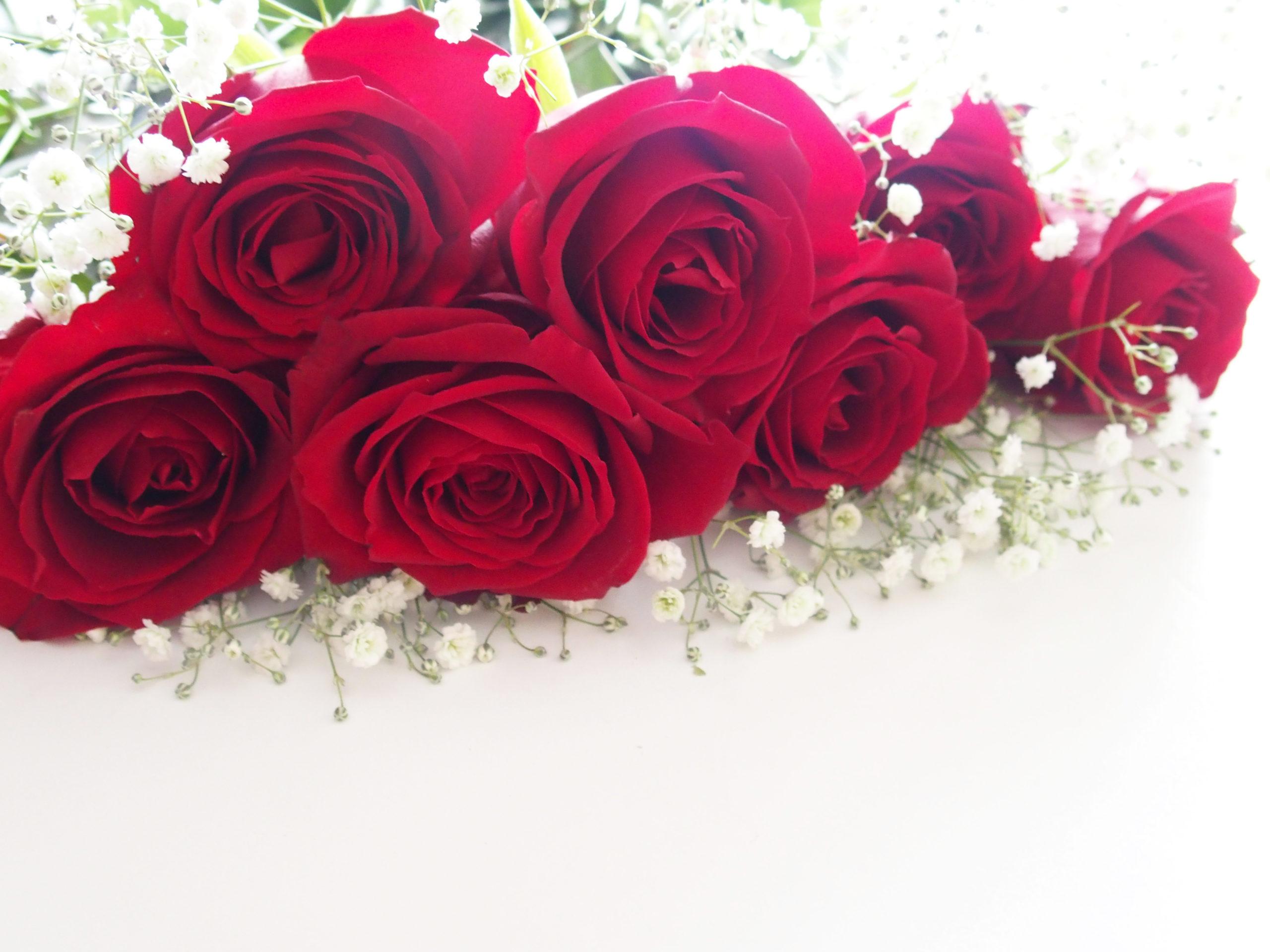 赤い薔薇とかすみ草の花束