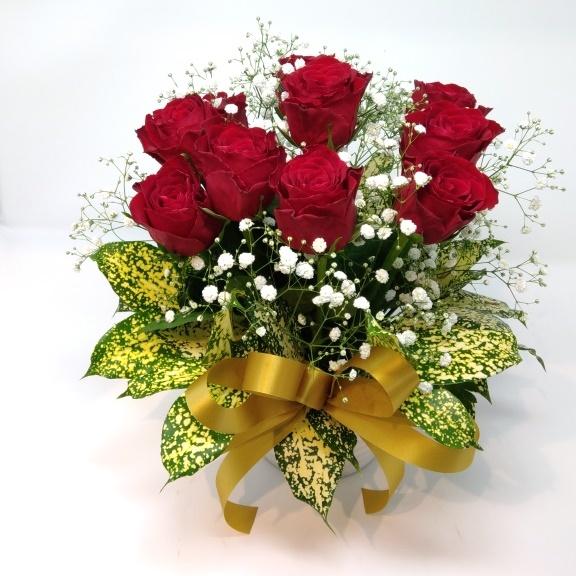 rosegarden-red