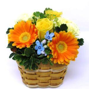 Flower in Panier