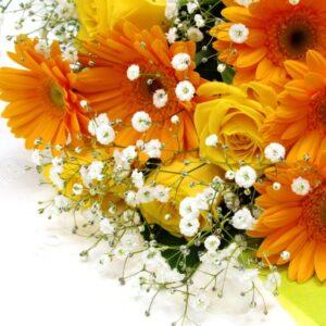 Sunshine-黄色オレンジ系のガーベラと薔薇とかすみ草の花束